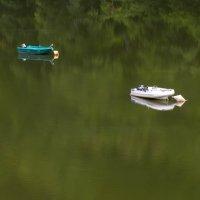Только зеркало зеркалу снится, тишина тишину сторожит :: Татьяна Гладченко