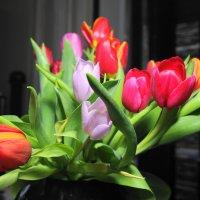 Цветы :: Александр