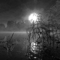 Ночь тиха :: Алексей Окунеев