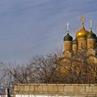 Утреннее солнце! :: Ирина Шарапова