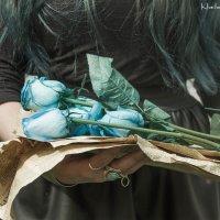 Dikie rozi :: Karen Khachaturov
