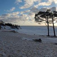 Северодвинск. Весна. Белое море. Лёд вскрылся :: Владимир Шибинский