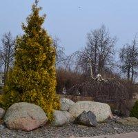 Парк камней. :: zoja