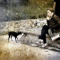 Дама с собачкой :: Хась Сибирский