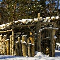 Избушка в лесу :: Дмитрий Конев