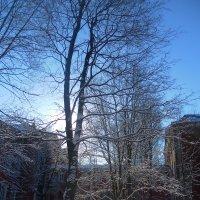 Солнечный день :: Агриппина