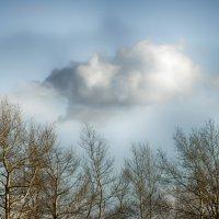 Весеннее облако... :: Константин Филякин