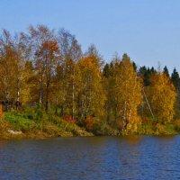 Осень :: petyxov петухов