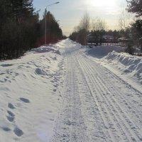 А у нас ещё зима. :: Галина Полина