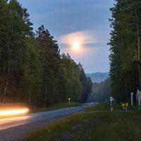 Лунная дорога :: Марина Бойко