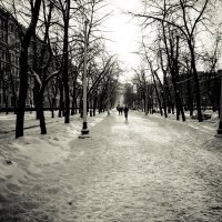 зимний бульвар :: Олеся Семенова