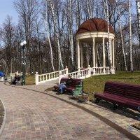 Первые теплые дни :: Владимир Кроливец