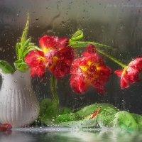 Букет тюльпанов за мокрым стеклом :: Светлана Л.