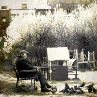 Старик и голуби :: Хась Сибирский