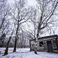 зима :: Letooches DeWillarduen