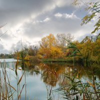 осень на реке :: георгий  петькун