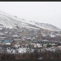 Снежок :: Алексей Хвастунов