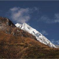 Все выше и выше...Гималаи,Непал...на высоте около 3000м. :: Александр Вивчарик