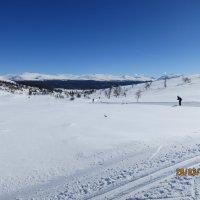 Лыжный марафон Årefjällsfoppet 2015, Швеция :: Василий С