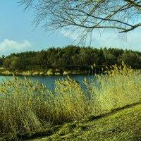водохранилище в марте :: георгий  петькун