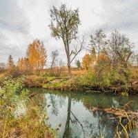 Рыбинск. Осень :: Евгений Кузьминов
