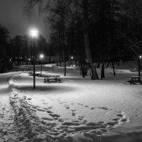 Вечерняя прогулка в зимнем парке :: Константин Фролов