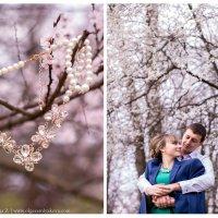 Весна для Дмитрия и Анны :: Olga Zemlyakova