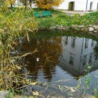Озеро :: EDO Бабурин