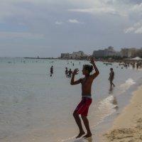Тунисец :: сергей адольфович