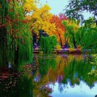 Осеннее отражение :: Инна