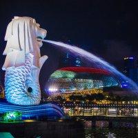 Сингапур.февраль 2015 :: Светлана Карпенко