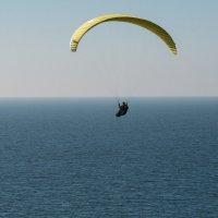 Над морем на параплане :: Александр Степовой