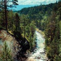 ущелье реки Кынгарга. :: Павел Крутенко