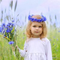 Васильковая фея) :: Ирина Кудряшова