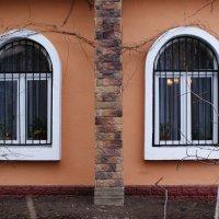 У каждого здания свое... лицо ! :: Николай Дони