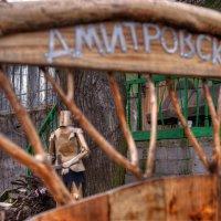 На охране дома :: Андрей Куприянов
