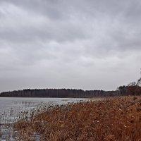 Затишье перед бурей. :: vkosin2012 Косинова Валентина