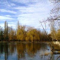 тишина природы :: Варвара
