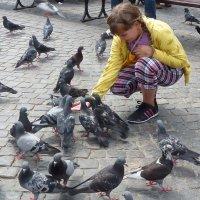 Катюша и голуби. Варшава :: Наталья Петракова