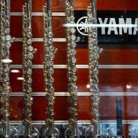 В магазине музыкальных инструментов. :: prostow