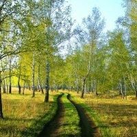 Весна :: Милешкин Владимир Алексеевич
