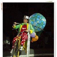 В цирке :: muh5257