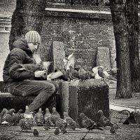 Доверие... :: Ирина Шарапова