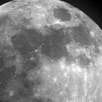 Ночное светило :: leoligra