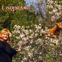 С 1 апреля! :: Наталья Джикидзе (Берёзина)