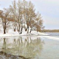 Отражение весны :: galina tihonova