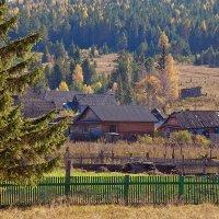деревня.. :: зоя полянская