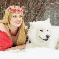 красное и чёрное :: Лена Балашова