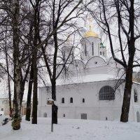 Спасо-Преображенский собор, Спасский монастырь, :: Tata Wolf