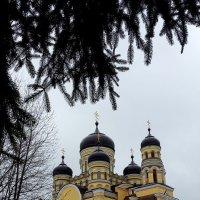 Молдова. Монастырь Хынку Святой Параскевы :: svetlanavoskresenskaia